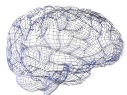 newspaper articles brain research