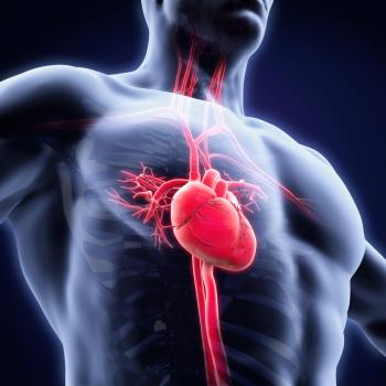endocarditis symptoms causes and treatment   medical