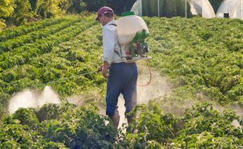 articles about pesticides
