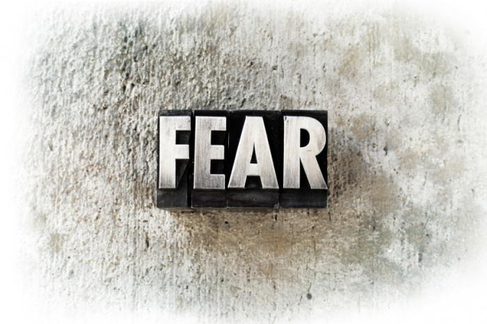 fear.jpg (700×466)