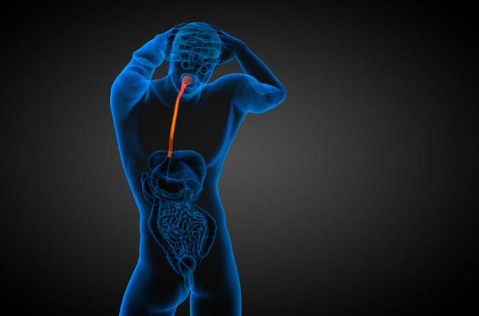 Link between P. gingivilis and esophagus cancer