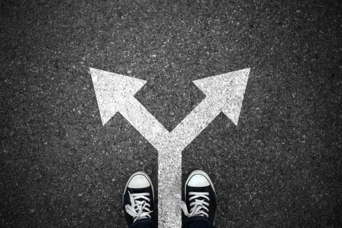características dos verdadeiros investidores decisão certa ou errada