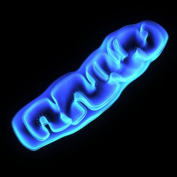 Parkinson's connection to faulty mitochondria investigated