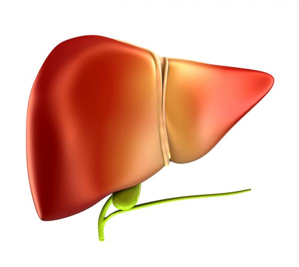 liver and gallbladder problems Liver and gall bladder symptoms can arise in diseases affecting the liver itself or as a result of complications from conditions affecting other organs or tissues the characteristic liver disease symptom or liver problem symptom which can be utilized in diagnosis is jaundice.