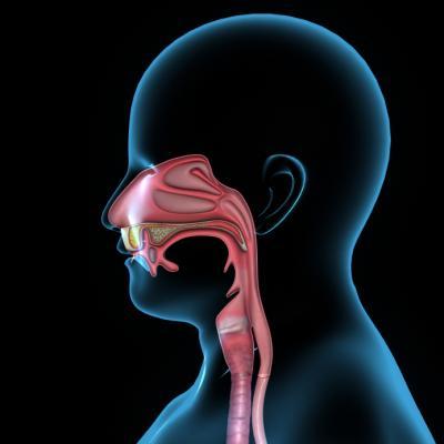 thrombosed external hemorrhoid surgery cost