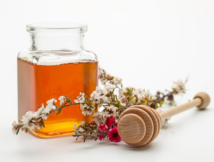 Manuka honey could stave off catheter-associated UTIs