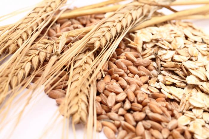 Whole grains may lead to a healthier gut, better immune