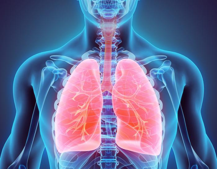 new evidence that vitamin d prevents respiratory infections