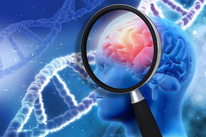 Medical News Today: Large-scale study finds genetic errors associated with brain cancer