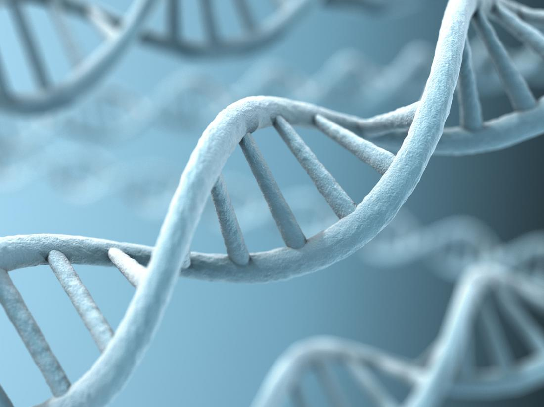 Genes Can Have Up To 80 Percent >> Schizophrenia Nearly 80 Percent Of Risk Down To Genes