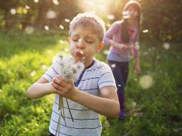 Everything you need to know about hay fever