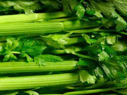 Fennel: Nutrition and benefits