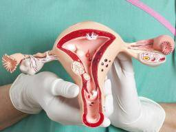 Bicornuate uterus: What it is, symptoms, and other uterine ...