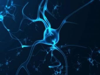 Morbo di Parkinson: perché le cellule cerebrali muoiono?