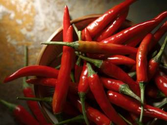 Hot pepper compound may reduce obesity