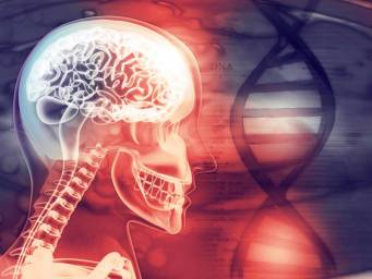 Anxiety: Hereditary brain chemistry explored