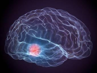 Agresif beyin kanserini 'ölümsüz yapan' yapan nedir?