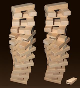2 Jenga! towers side-by-side, one missing a brick