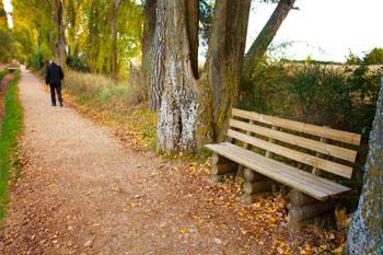 Walking along path
