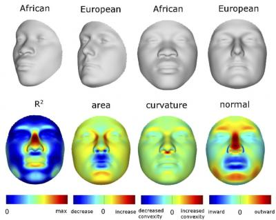 Faces Ancestry