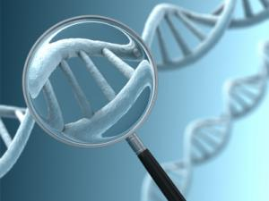DNA under magnifying glass