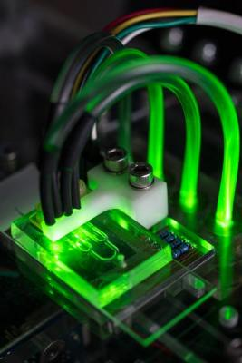 Artificial Blood Vessels on a Microfluidic Chip