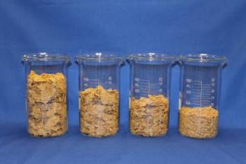 four beakers of cereal
