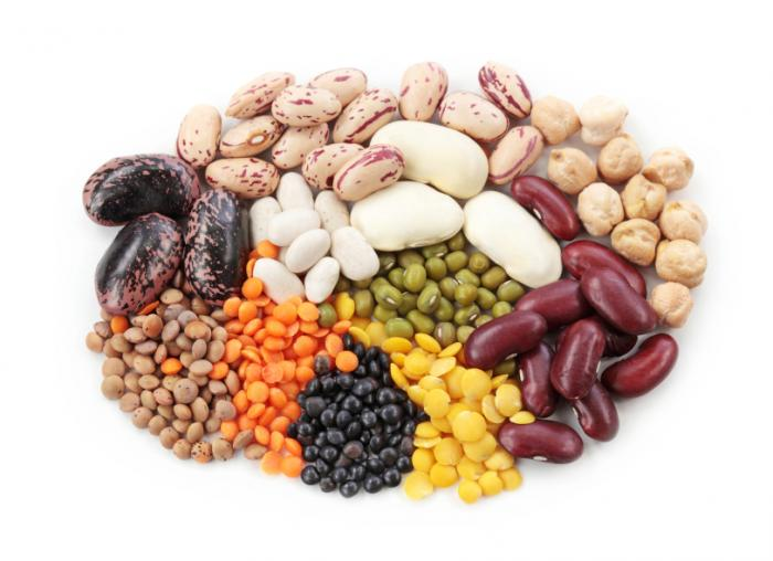 various types of legumes