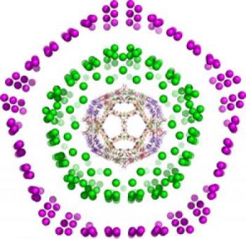 Viruses and Fullerenes
