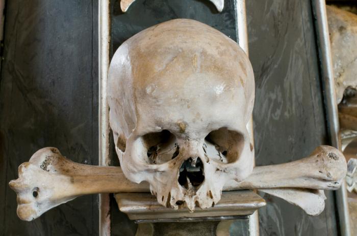 medieval skull