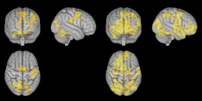 Meditation brain image