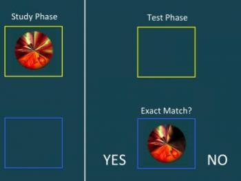 The Alzheimer's Test
