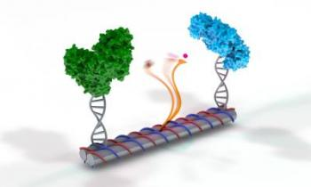 A New Achievement in the Fast-Growing Field of DNA Nanotechnology