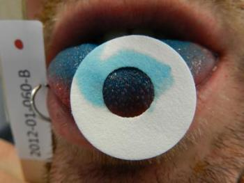 Citizen Scientists in the Genetics of Taste Lab