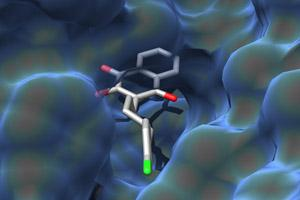 How atovaquone binds to its target protein