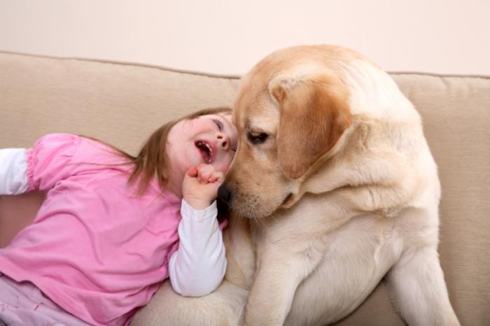 Dog and young girl