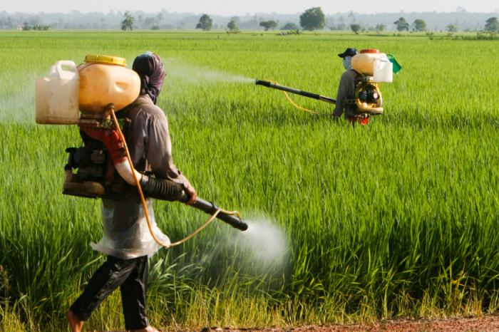 http://www.medicalnewstoday.com/images/articles/278/278645/pesticide-application.jpg