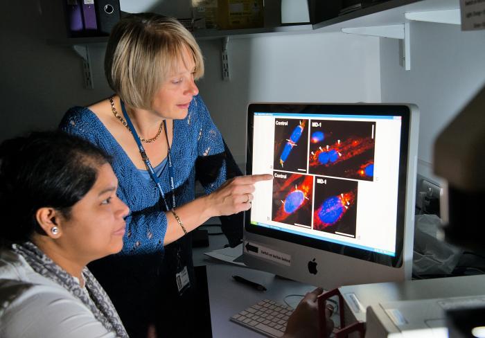 scientists examining data
