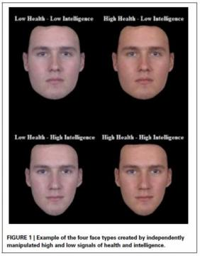[Example of the 4 Face Types]
