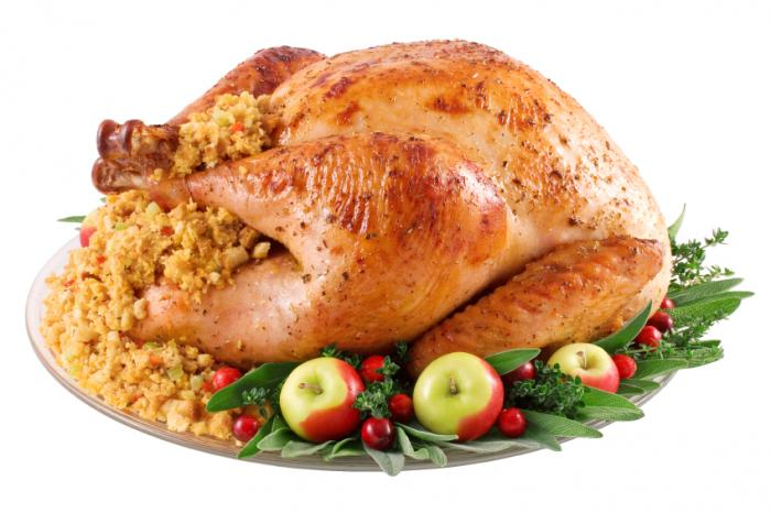 thanksgiving turkey]