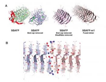 Creating a Self-Assembling Protein
