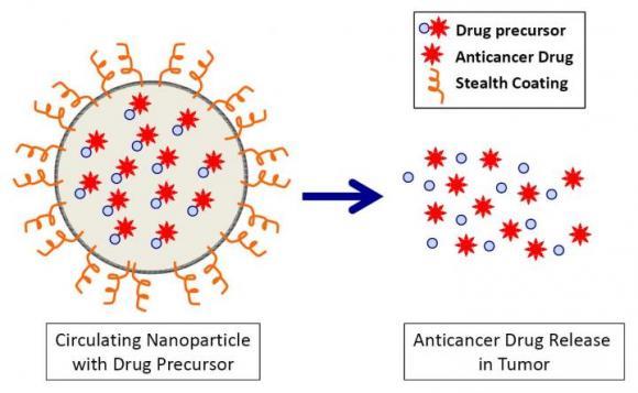 Nanoparticle for Anticancer Drug Delivery