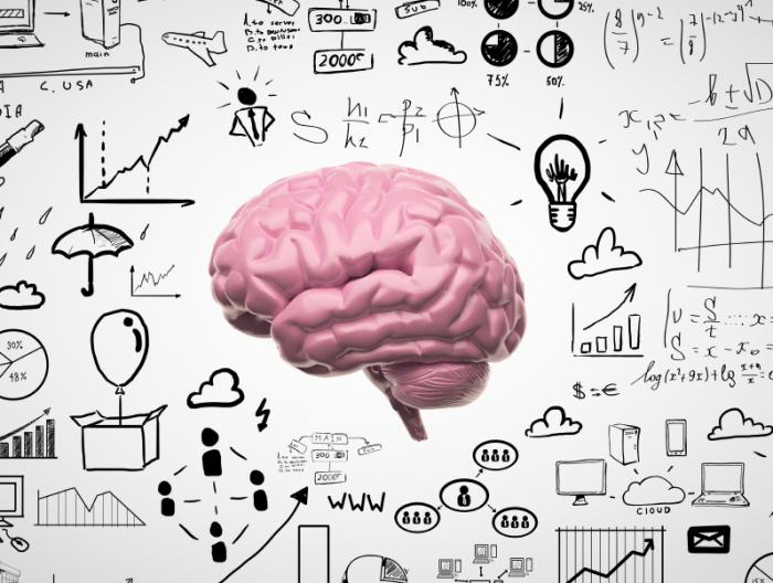 [graphic of the brain and cognitive thinking]