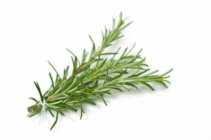 Some rosemary